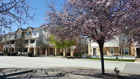 摩根希爾(Morgan Hill)的住宅環境優美、街道新穎。(Morgan Hill地產經紀Dianna Yang-Dininno提供)