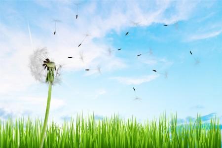 当你拥有的那么少,一件小小的东西都会让你开心到飞起来。(fotolia)