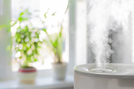 在办公室和居间中都安放空气加湿器。 (Yury Stroykin/Shutterstock)