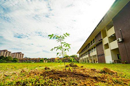 4月15日,双溪龙国民型华文学校进行了种树活动,希望能为学生们提供更好的学习环境。 (Steven/大纪元)