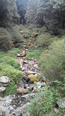 山澗清泉逢枯水期水量不多,但仍有淙淙流水聲。(曾晏均/大紀元)