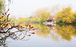 中国寓言:荆巫