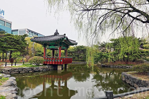 水中池水(全景林/大紀元)