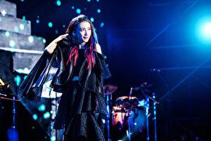 戴佩妮北京开唱,图现场画面。(妮乐佛提供)