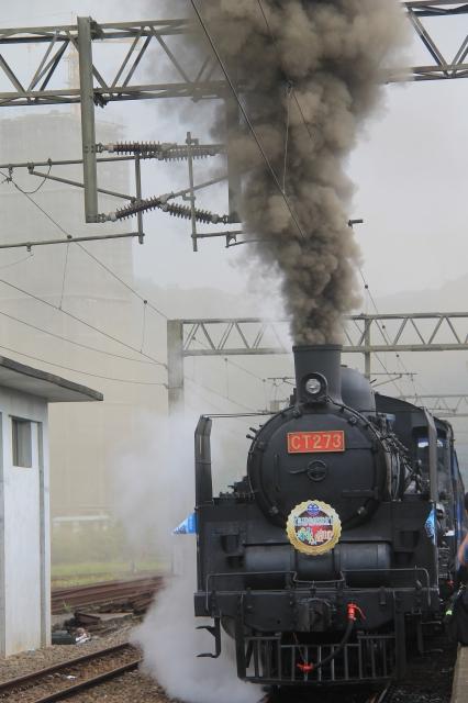 蒸汽火車啟航綠博。(郭千華/大紀元)