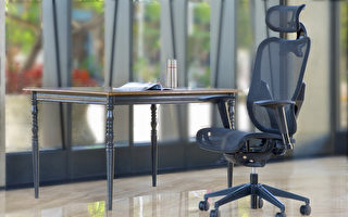 人體工學網椅 辦公電腦椅健康選擇