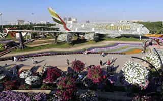 全球最大花園在中東沙漠 想不到吧?