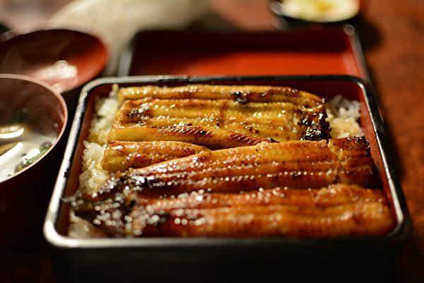 随着蒲烧鳗的盛行,多年下来,不仅让日本鳗濒临灭绝,连欧洲鳗、美洲鳗都十分稀少,急需保育。(Pixabay)