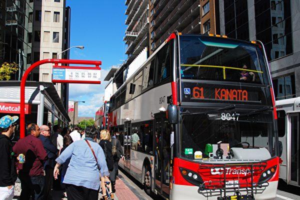 2019年安省陽光名單 渥太華巴士司機人數激增