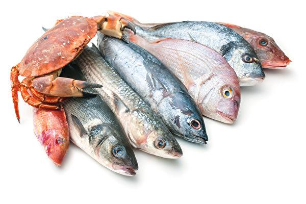 鱼类营养,但有些种类含毒素较多。哪些鱼类健康,哪些鱼类应尽量少吃?