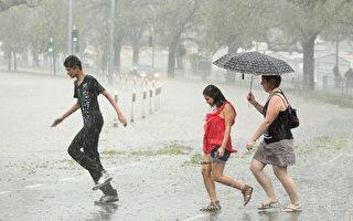 4月9日開始的一場大雨席捲了整個墨爾本,惡劣的天氣摧毀了數百棵樹木,使數千戶家庭電力中斷。 ( Robert Cianflone/Getty Images)