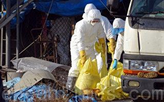 總統府表示,世界衛生組織(WHO)應正視台灣作為全球防疫體系一環。(大紀元資料照)