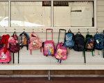 坎特伯雷地区18%共47所学校超负荷,57%共150所学校则面临此危险。(Phil Walter/Getty Images)