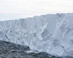 研究人员指出,全球暖化造成南极洲冰层融化,植物的生命开始出现现代以来从未见过的生长情况,当地银白大地也正随之转绿。图为南极冰山。(Frances M. Ginter/Getty Images)