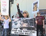 灣區愛狗人士在舊金山中領館前抗議玉林狗肉節。(林驍然/大紀元)