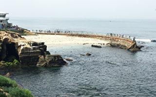加州圣地亚哥拉荷亚海滩上的儿童海滩。图右边是为阻挡海浪而建的海墙。游人们可在海墙上行走。(杨婕/大纪元)
