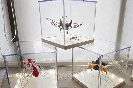 谢宁剪出的纸雕昆虫造型栩栩如生,非常有生命力。(李芳如/大纪元)