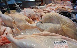 民众认明新北禽屠宰卫生检查合格标志即可安心选购。(新北市政府农业局/提供)