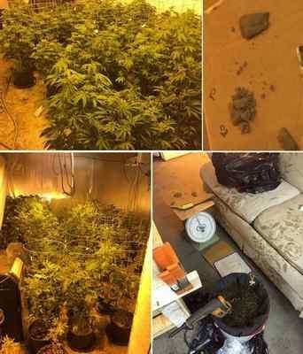 警方在柯汶纳市一幢商业大楼(1000 block of East Edna Place)发现大麻窝。(柯汶纳警方提供)