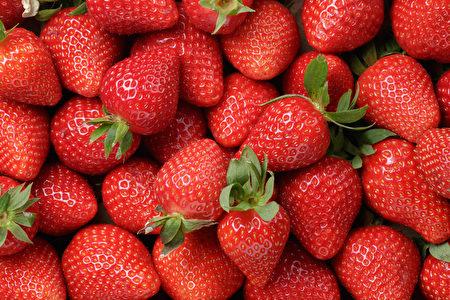 草莓低热量高纤维,富含抗氧化剂和多种营养素,是高效减肥和护心食品。(GooDween123/Shutterstock)