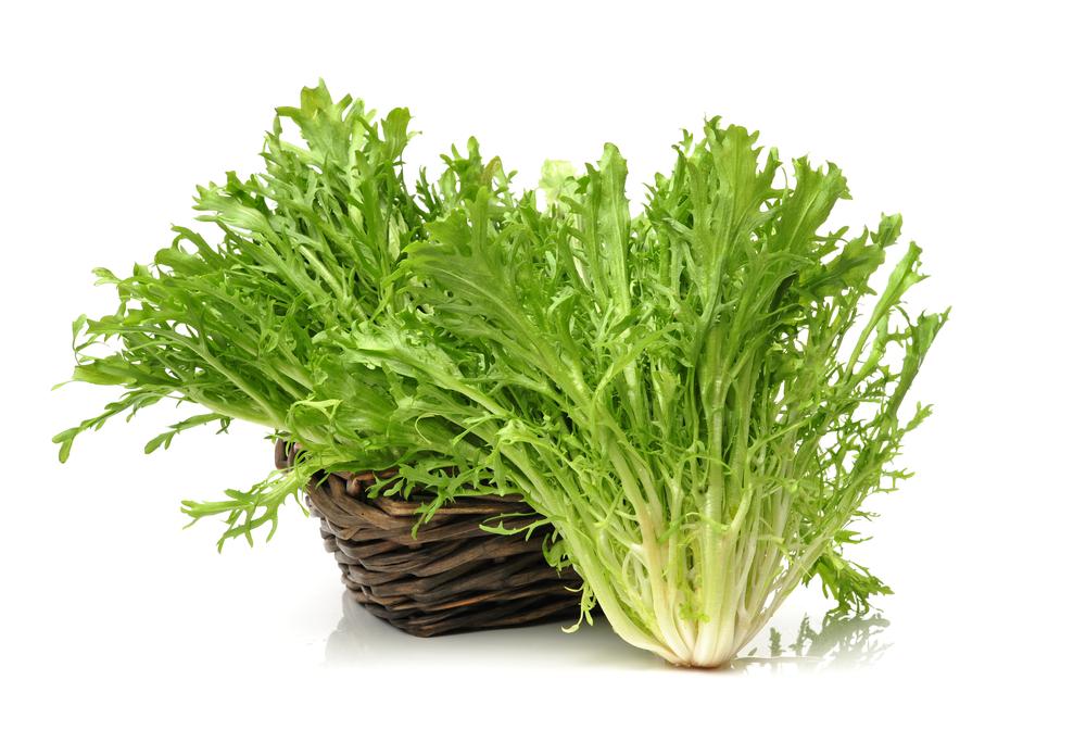 小滿時,中國民間有吃苦菜(苦苣,或稱苦菊)的習俗。(shutterstock)