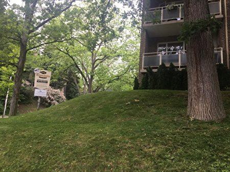 玫瑰谷路(Rosedale Rd)1号是位于多伦多市中心的一处公寓,四周风景优美,入住率极高。(摄影:滕冬育/大纪元)
