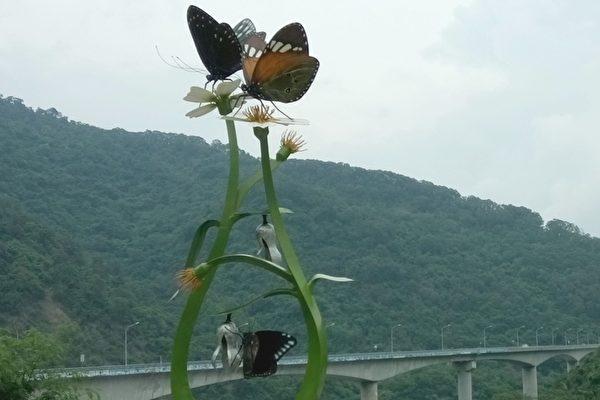 """高雄茂林国家风景区景色优美,""""紫蝶幽谷""""为世界级的自然资产,是全世界仅有的两处越冬型蝴蝶谷之一。(张贵卿/大纪元)"""