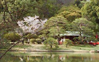 宁静古朴的日本庭园 东京六义园