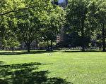炮台公园内大片的草坪,为人们提供了充裕的休闲场地。(杨帆/大纪元)
