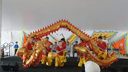 華林功夫學校精彩的舞龍表演拉開了豐富多采的文藝表演序幕。(廖述祥/大紀元)