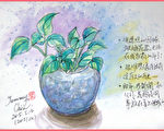 淡彩速写  / 友人送的玻璃花瓶(图片来源:作者 邱荣蓉 提供)