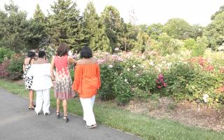 同在緬街上的植物園是個鬧中取靜的好地方。 (張謙/大紀元)