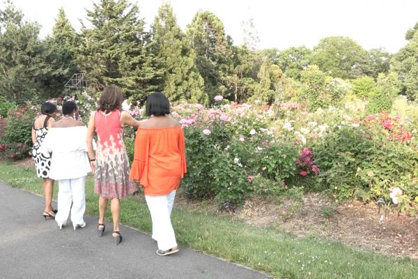 同在缅街上的植物园是个闹中取静的好地方。 (张谦/大纪元)