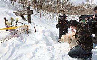 3月27日清晨,位于日本栃木县那须町的一处滑雪场发生雪崩,7名高中生及1名领队老师不幸遇难,40人受伤。图为雪崩现场民众在哀悼遇难者。(Kyodo News via Getty Images)