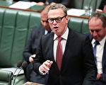 澳洲自由党众议院领袖、国防工业部长派恩(Christopher Pyne)支持同性婚姻的言论引发自由党内部一些人士的强烈愤怒,议员们正在向总理特恩布尔施压,要求撤销派恩众议院领袖的职务。(Stefan Postles/Getty Images)