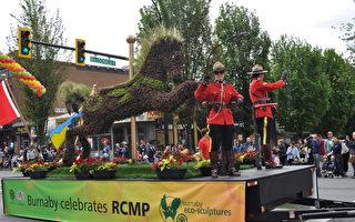 圖:皇家騎警的戰馬生態塑像令人稱奇。(唐風/大紀元)