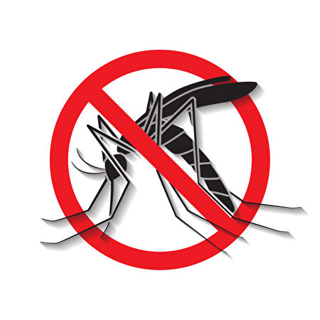 远离病媒蚊,预防胜于治疗。(Fotolia)
