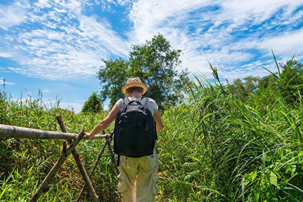 在山林間奔竄的山友,務必留意毒蛇的出沒,並學習自救處理。(Fotolia)