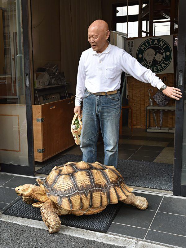 "2015年6月10日,三谷久生和""蹦将""(Bon-chan)出门散步。 (KAZUHIRO NOGI/AFP/Getty Images)"