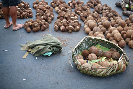 当地居民贩卖椰子和芋头 (Mark Kolbe/Getty Images)