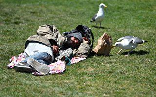一个游民在旧金山市政厅前的草坪上晒太阳。(JOSH EDELSON/AFP/Getty Images)