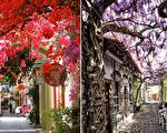 你知道全球最美的15条街道在哪里吗?(大纪元合成)