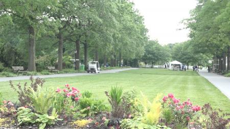 同在缅街上的植物园是个闹中取静的好地方。