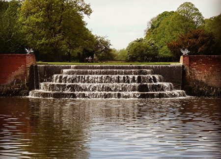 灌木公園(Bushy Park)內的水園(Pixabay)