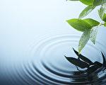 被人们普遍认为没有生命的水,讯息对它的影响竟如此之大。(fotolia)