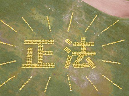 7月23日上午,法輪功學員在多倫多市的Riverdale公園排字,排出「正法」兩個金黃的大字。(大紀元)