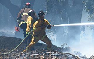 7月7日(週五)下午,舊金山市區的克洛克·亞馬遜公園突發大火,火勢延燒23英畝,一度對周邊的居民區造成威脅。(林驍然/大紀元)