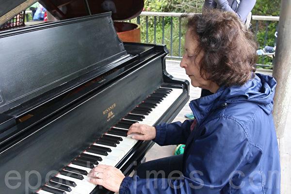 植物园中弹钢琴 享受花朵与音乐