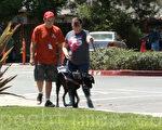 在拉菲尔导盲犬学校夏令营,盲人学生在体验和导盲犬在一起的生活。(于伟/大纪元)