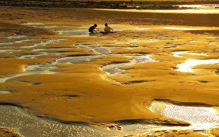 維護美麗海岸 桃園誕生首本保護白皮書